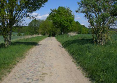 Feldweg nach Schöneberg