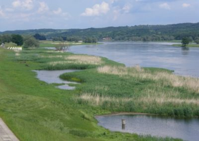 Auf dem Oderdeich