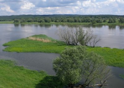 An der Oder