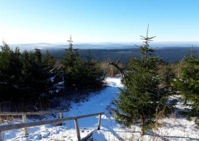 Verschneiter Erzgebrigswald